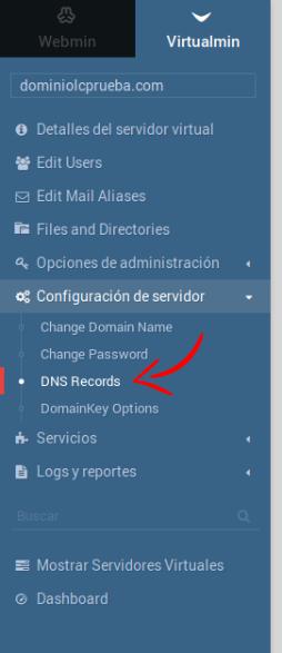 Gestionar DNS en LC Internet