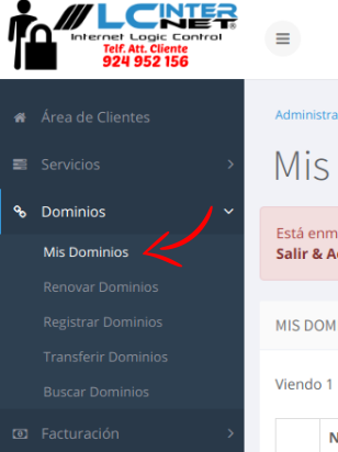 Getionar DNS a traves del registro del dominio